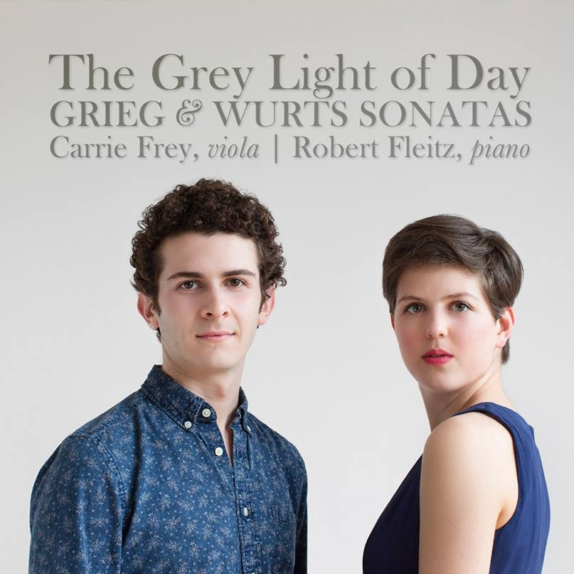 The grey light of day cover