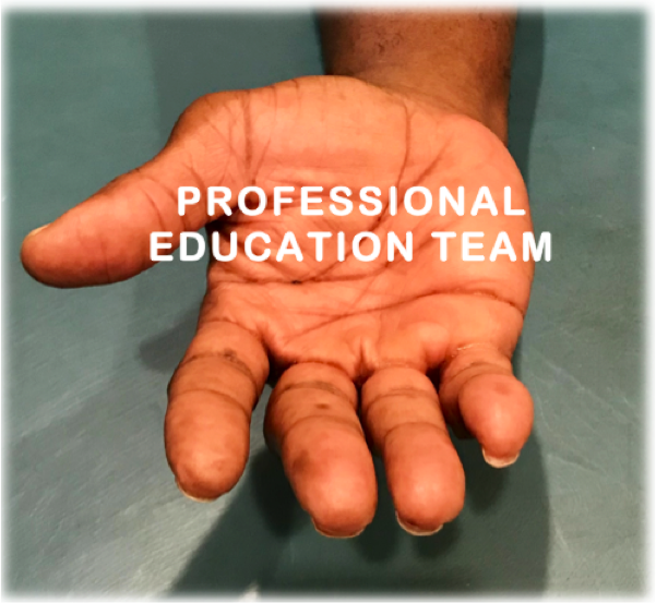 TRAINING - We need people who enjoy teaching, presenting and providing educational resources for: workshops, webinars, conferences and networking events.