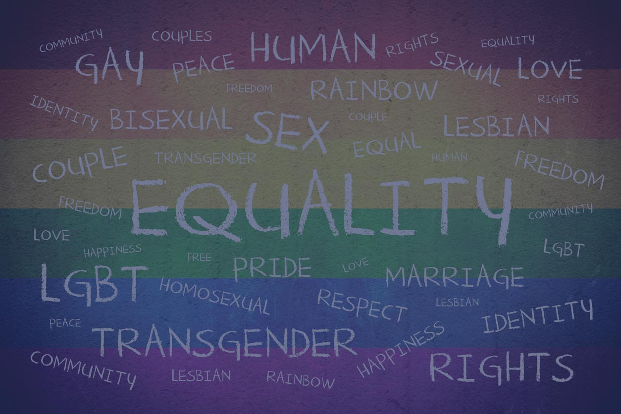 sexuality & Gender -