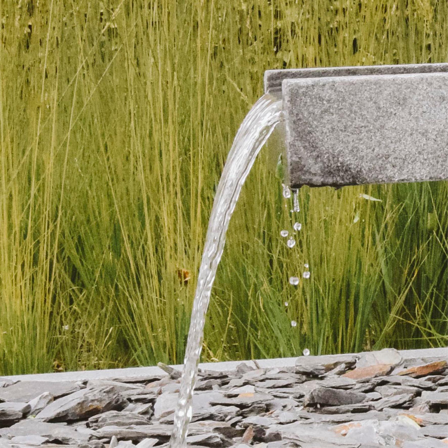 The Lung Project_waterelement_waterpartij_strakke versus organische architectuur.jpg