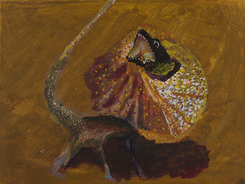 17. Lewis Nannup,  Frilled Neck Lizard , 2018, acrylic on canvas, 46 x 61 cm $550