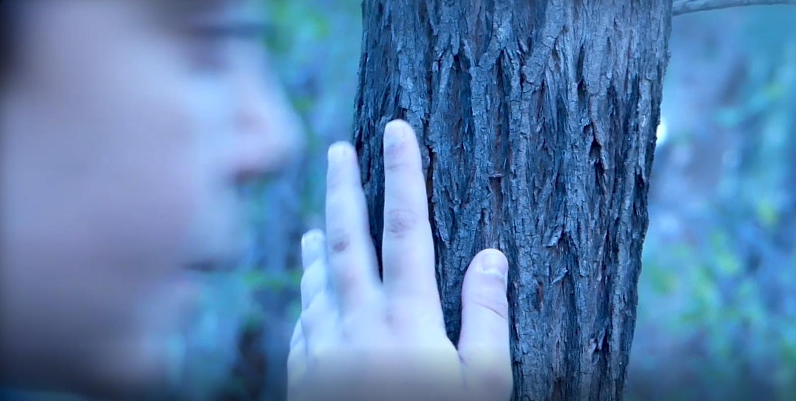 31. Jo Ugle,  Waking in My Dreams  (still), 2018, video NFS
