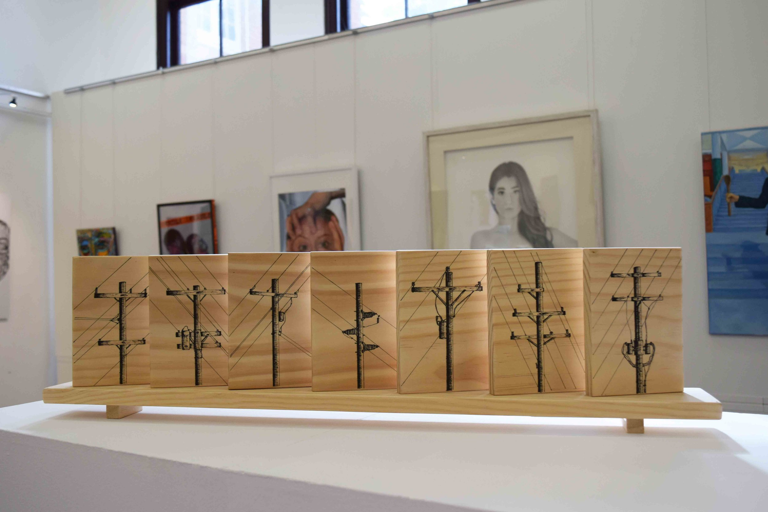56. Luke Button,  Monumnet , ink on pine, 97 x 200 x 9 cm NFS   WINNER - UP AND COMING AWARD