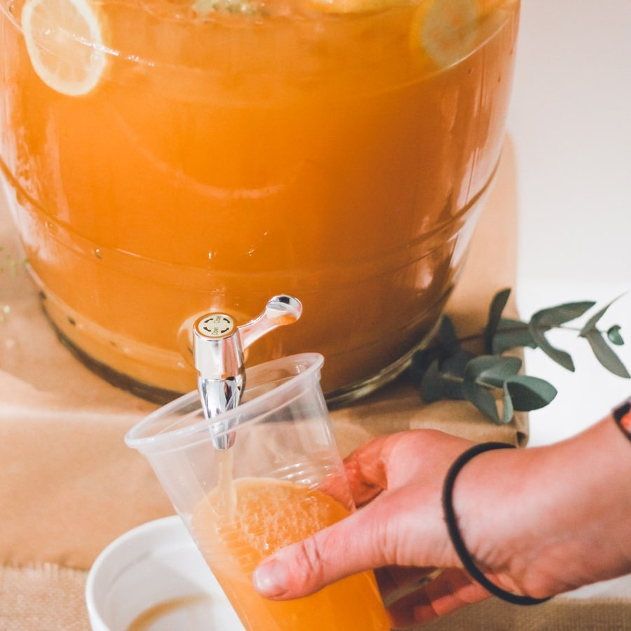 Botanical Tea & Juice - Enjoy a refreshing botanical blend of iced tea or juice as you wander through the What On Earth Open Day's exhibitions and activities.