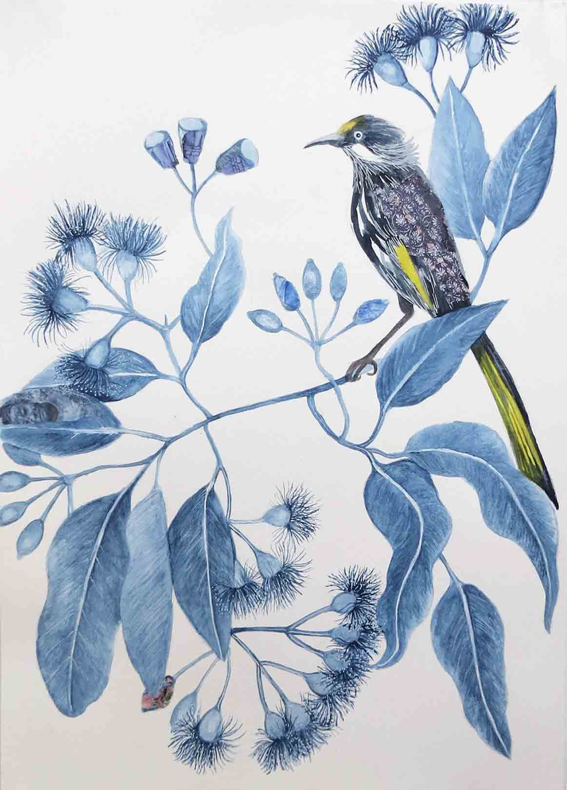 3. Jude Willis, Corymbia ficifolia with New Holland Honeyeater, 2019, watercolour and collage on paper, 42 x 29.5 cm $290