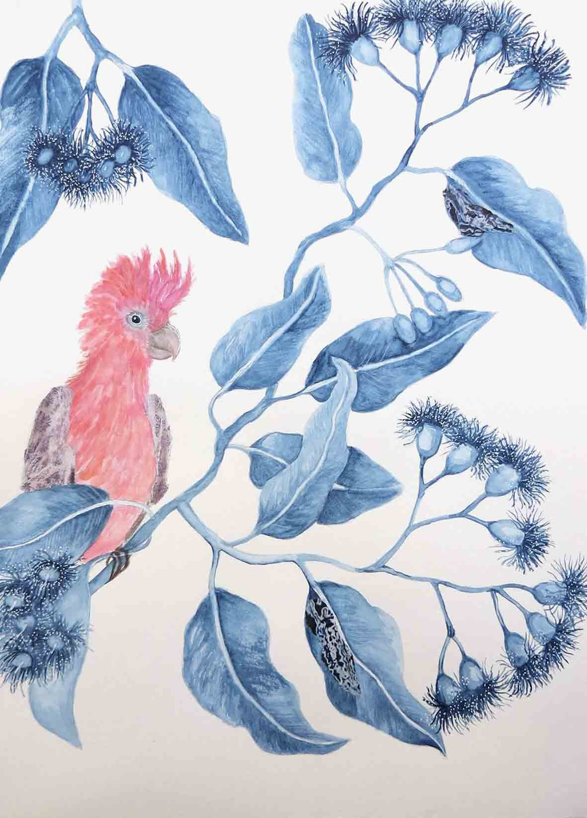 4. Jude Willis, Corymbia ficifolia with Pink and Grey Galah, 2019, watercolour and collage on paper, 42 x 29.5 cm $290