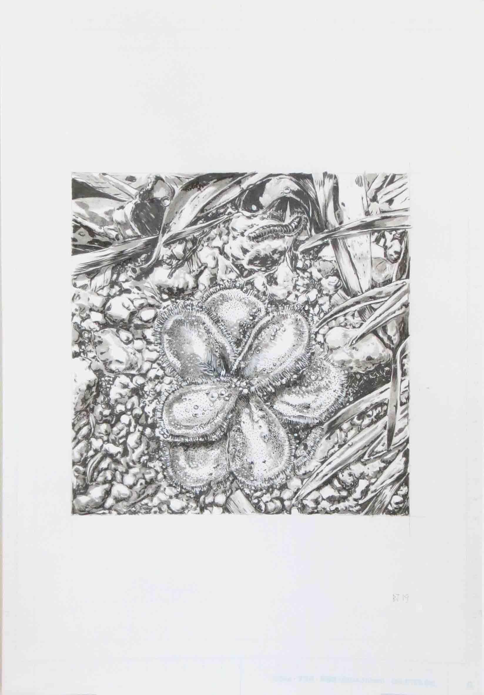 58. Ben Jones, On The Floor 1, 2019, ink on paper, 42 x 29.7 cm $280