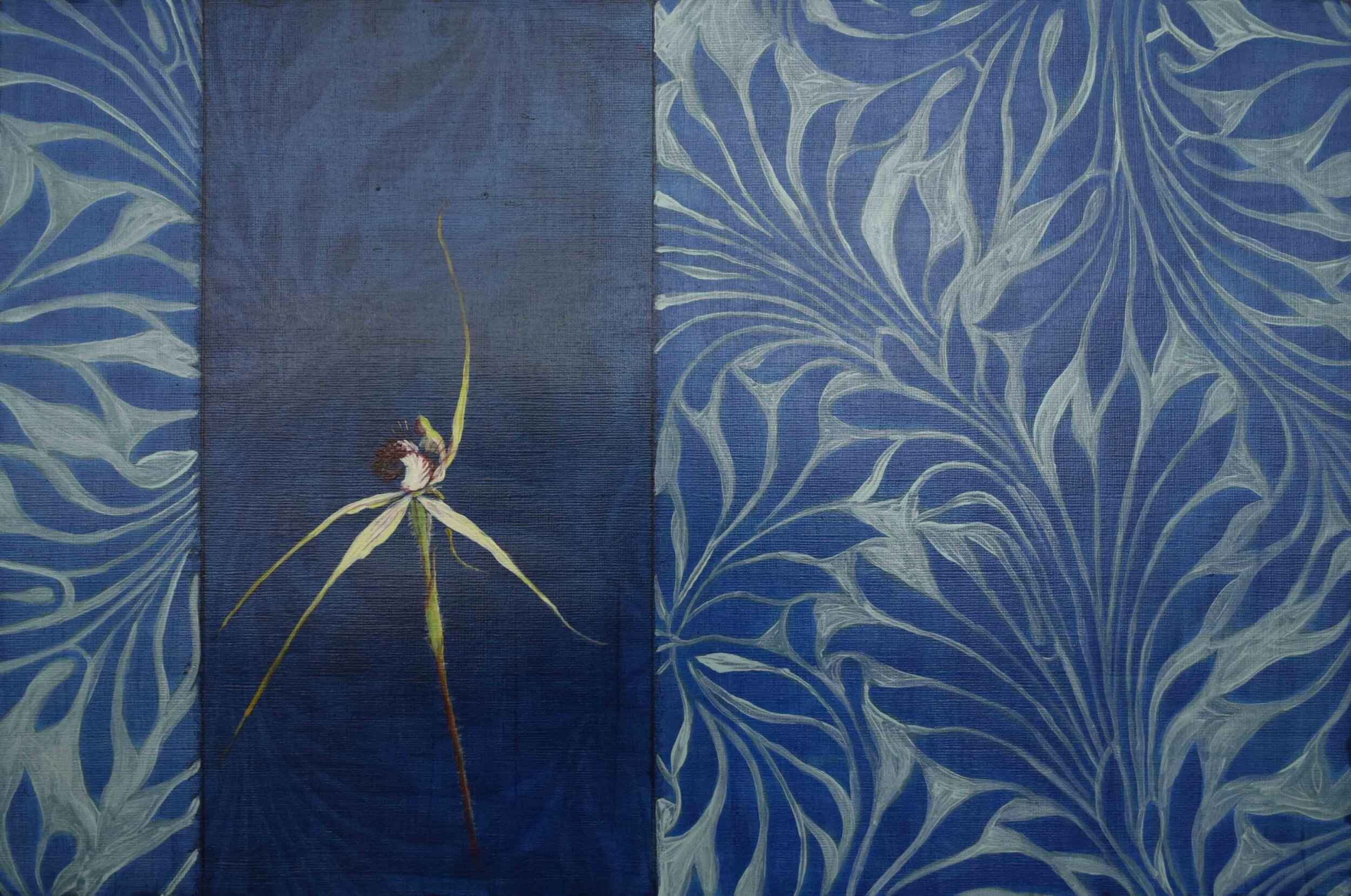 65. Clare McFarlane, Carousel Spider Orchid - blue study, 2019, acrylic and aerosol on paper, 30.5 x 45.8 cm $550