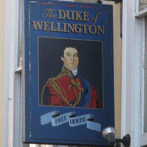 XIII. THE DUKE OF WELLINGTON