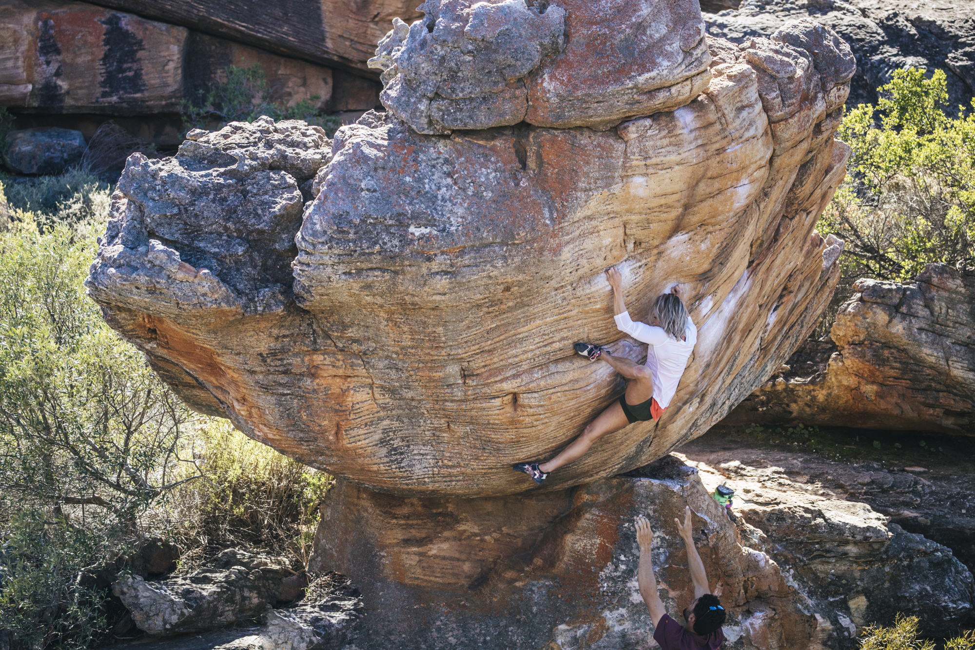 The Hatchling, 8A