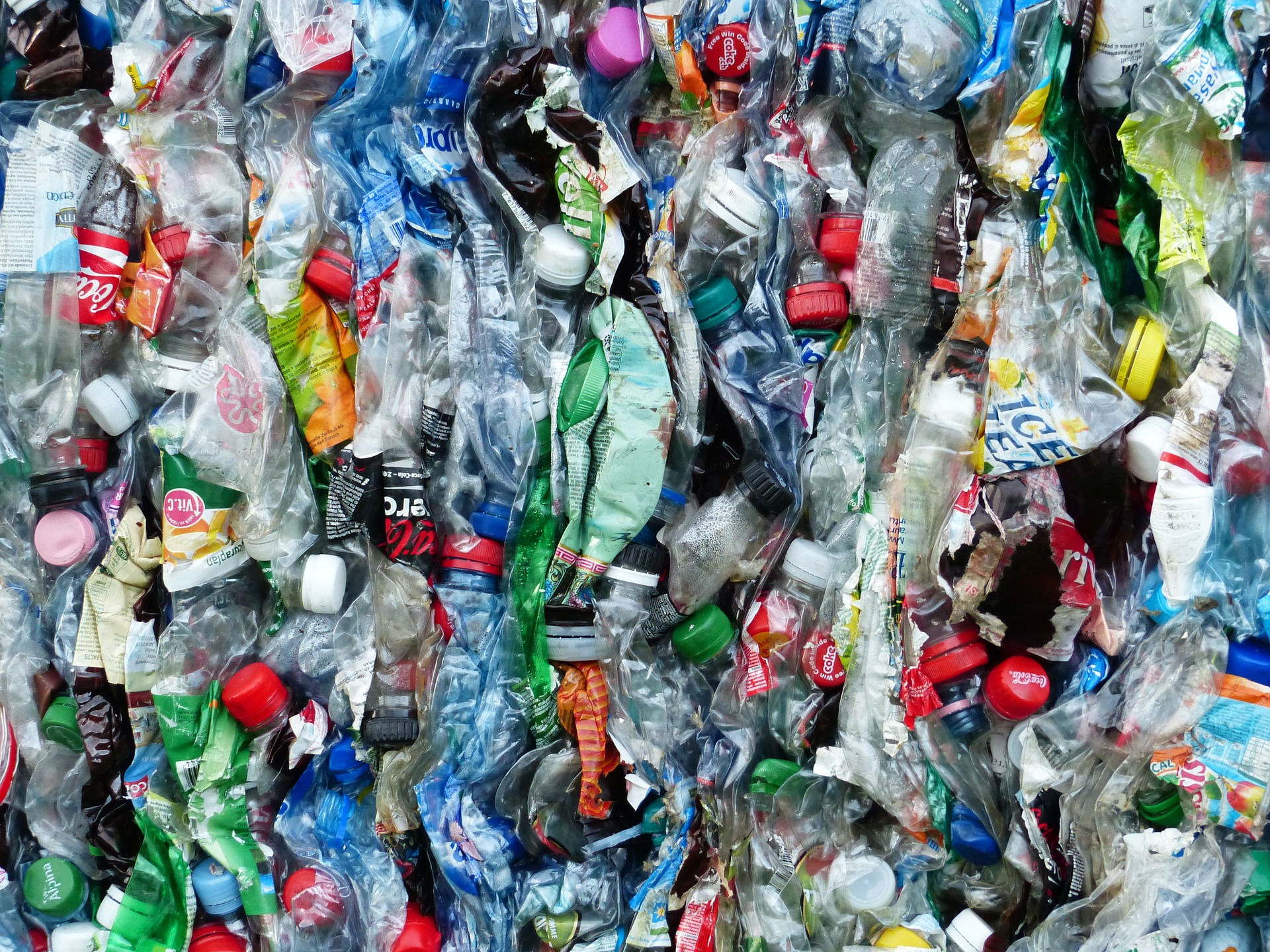 Say no to single use plastic - Use a refillable water bottle instead of bottled water and take your own re-usable bag to the shops. Remember we're social beings… those that look up to you will copy you.