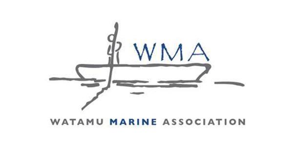 WMA flipflopi partner