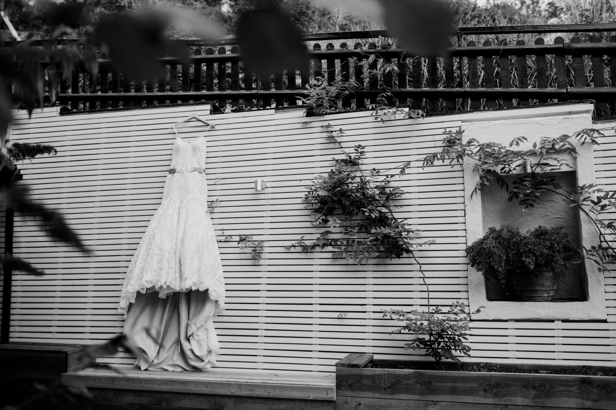 Newton Abbot Wedding Photographer 001_.jpg