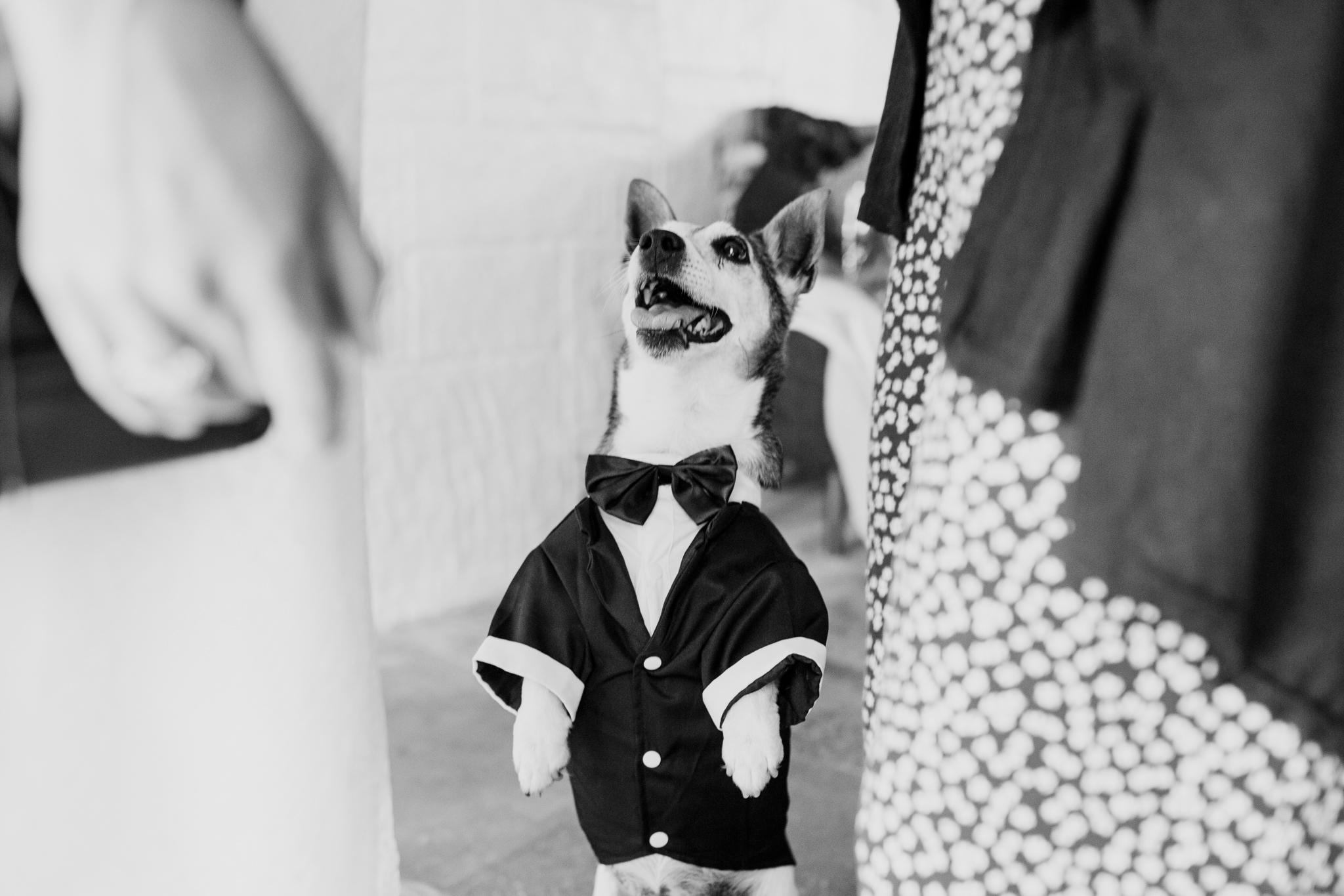 Polhawn Fort Wedding Photographer 004_.jpg