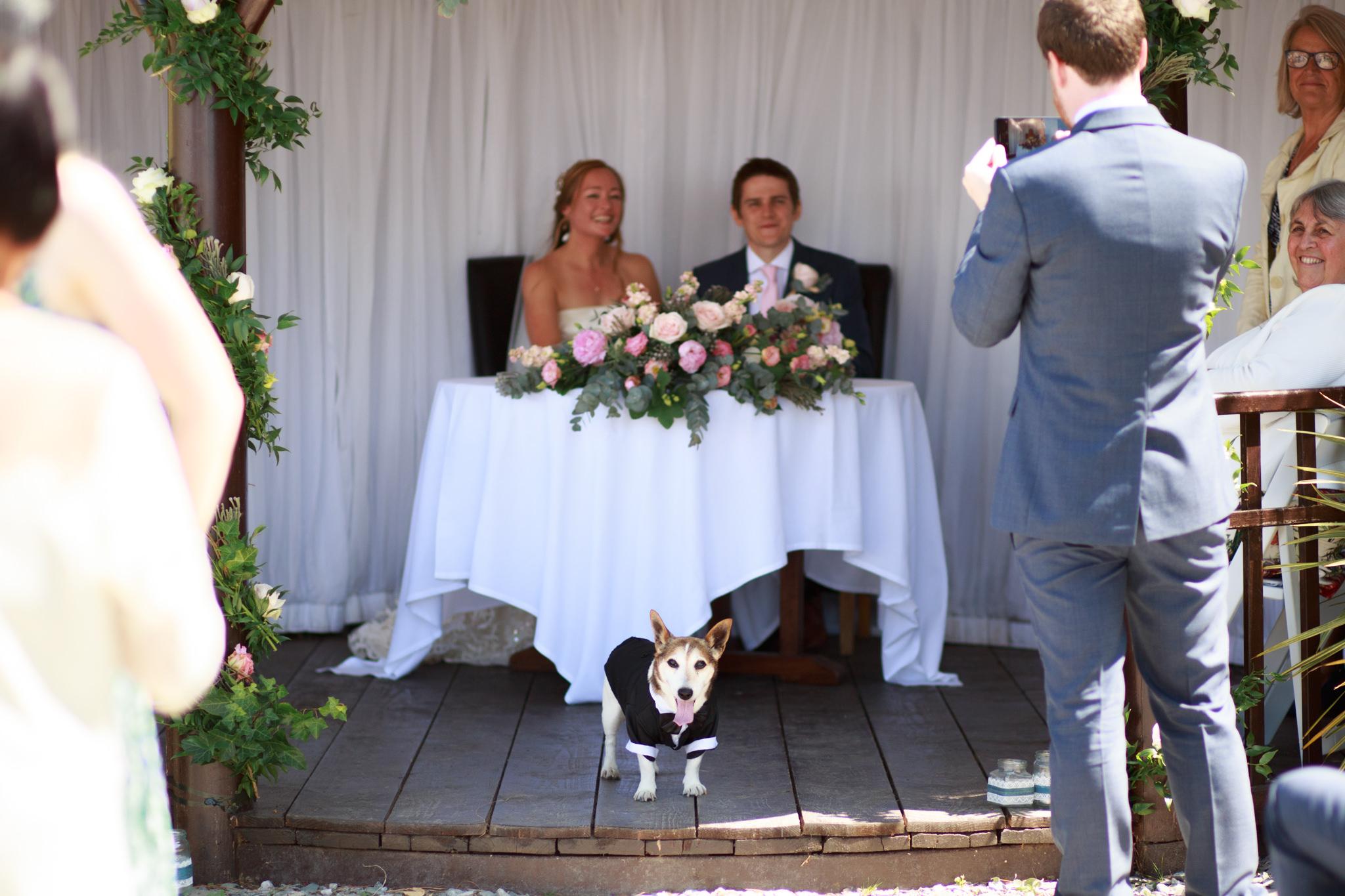 Polhawn Fort Wedding Photographer 013_.jpg