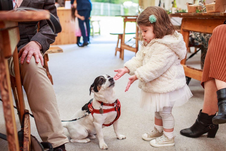 Dartmoor Wedding Photographer 034_.jpg