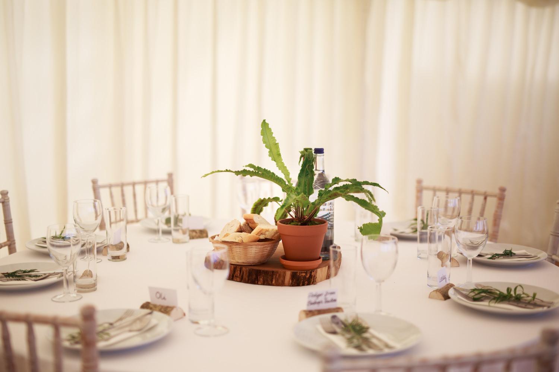 DIY Wedding Photos 028_.jpg