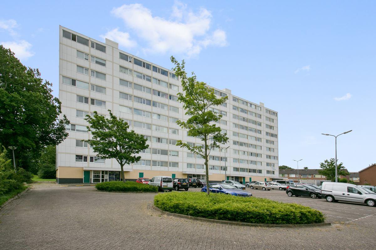 Torenflats Oost Souburg  Herstructurering van 3 torenflats van totaal 216 appartementen naar 2 gerenoveerde torenflats en 22 geschakelde grondgebonden woningen omgeven door een fraai park.