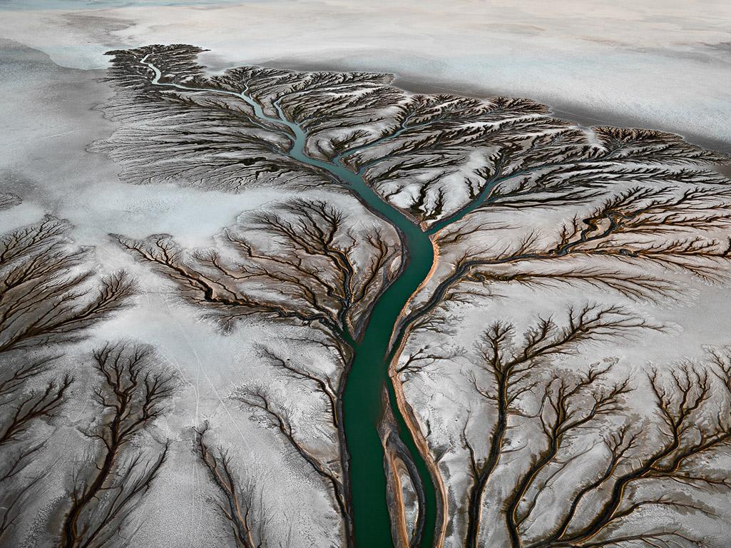 Colorado River Delta #2  Near San Felipe, Baja, Mexico, 2011