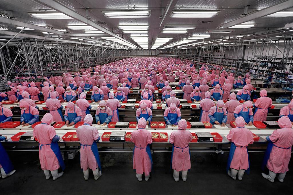 Manufacturing #17  Deda Chicken Processing Plant, Dehui City, Jilin Province, China, 2005