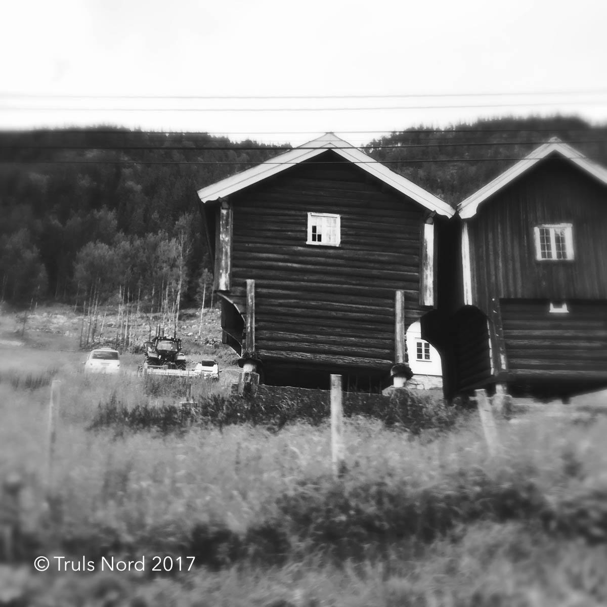 17/7 - Längtan upptill höglandetMilvis upp utan mödaHus och landskapförändras,förenklas, tills vimöter den stora tidenpå Hardangervidda