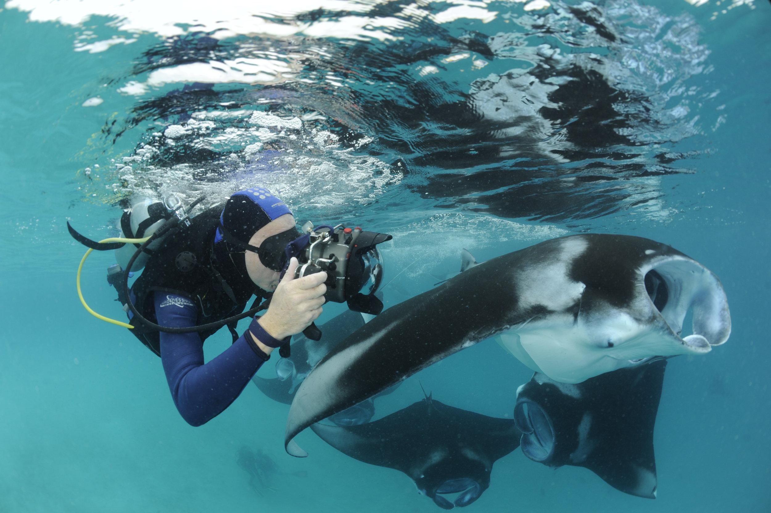 Manta Cameraman