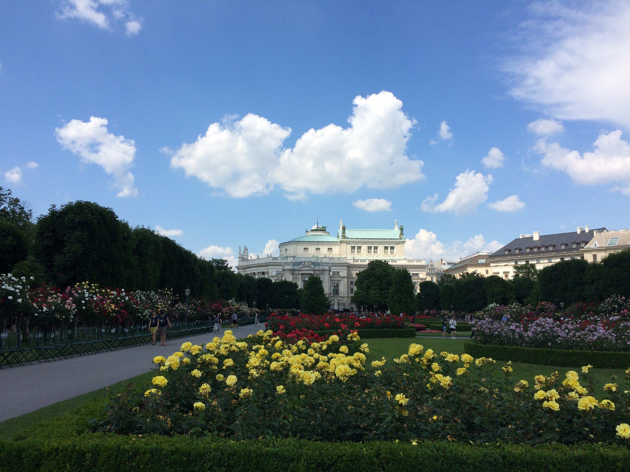 rose gardens at Volksgarten, view to Burgtheater, 1st district, downtown Vienna