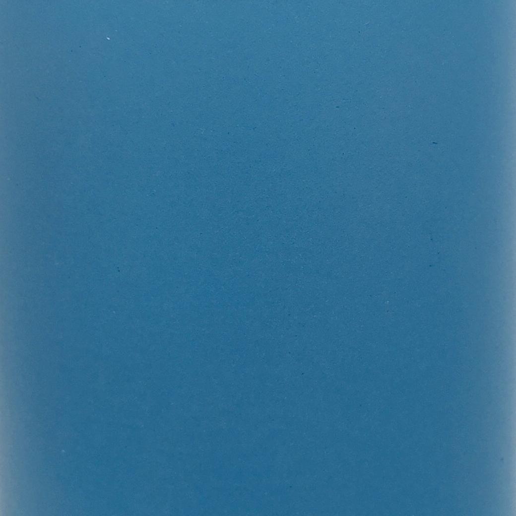 2020 Carolina Sky Blue