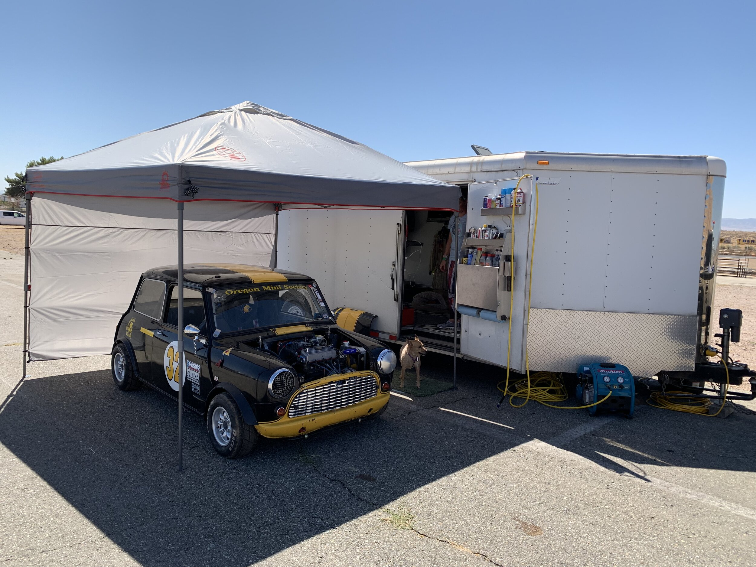 Alex's 65 Austin Mini Cooper S, raced by Shannon Penrith with VARA out of  Southern California