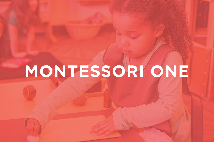 CaseThumb2_Montessori.jpg