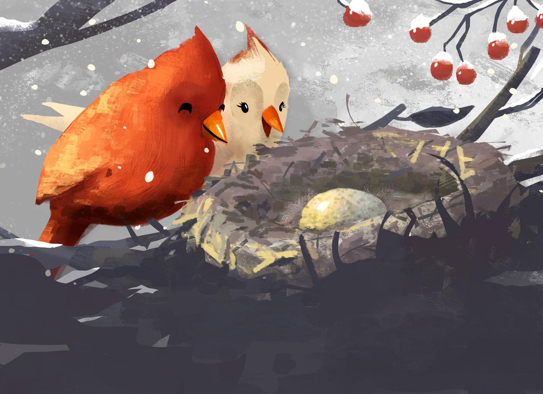 bird_christmas_card5g_notext.jpg
