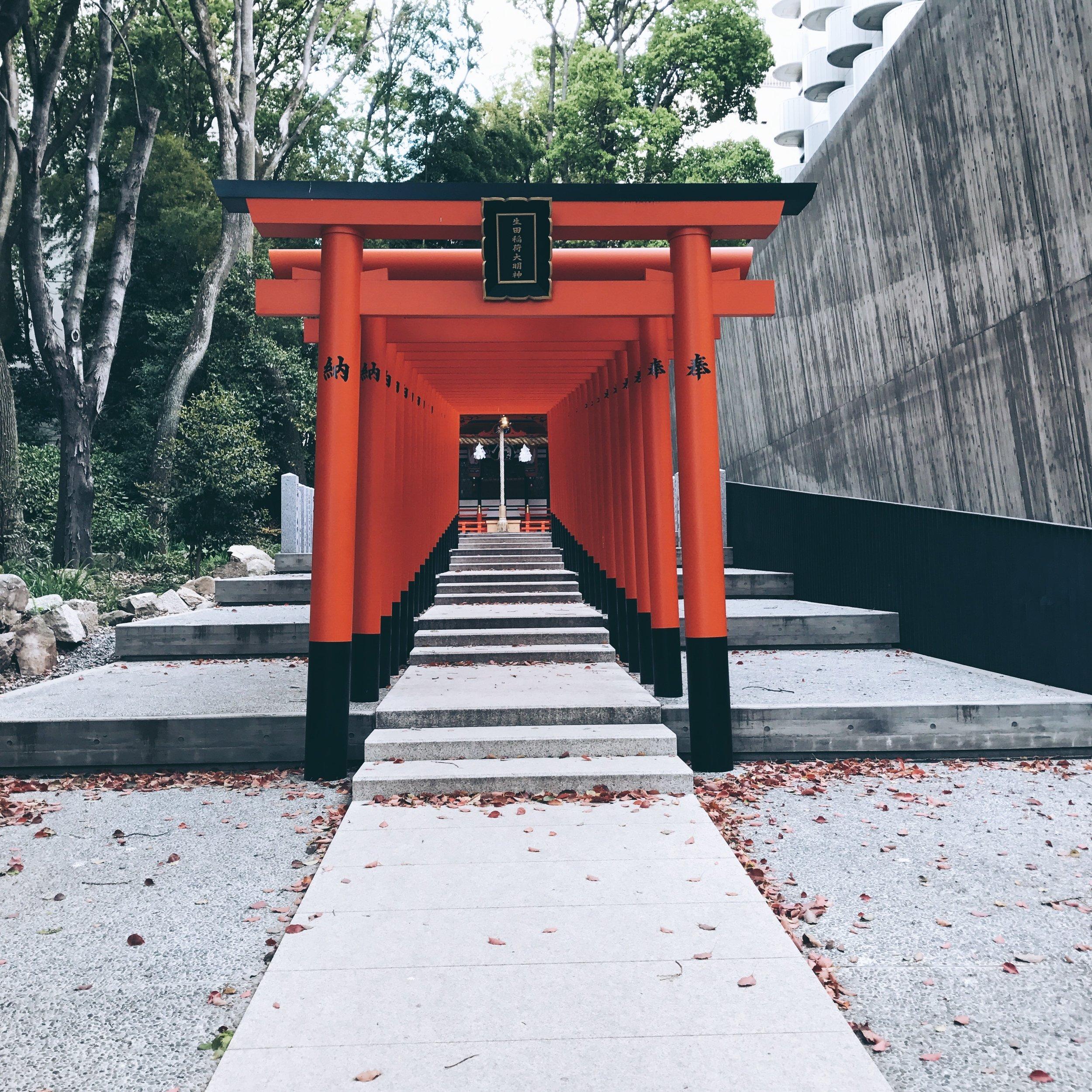 Kobe1.jpg