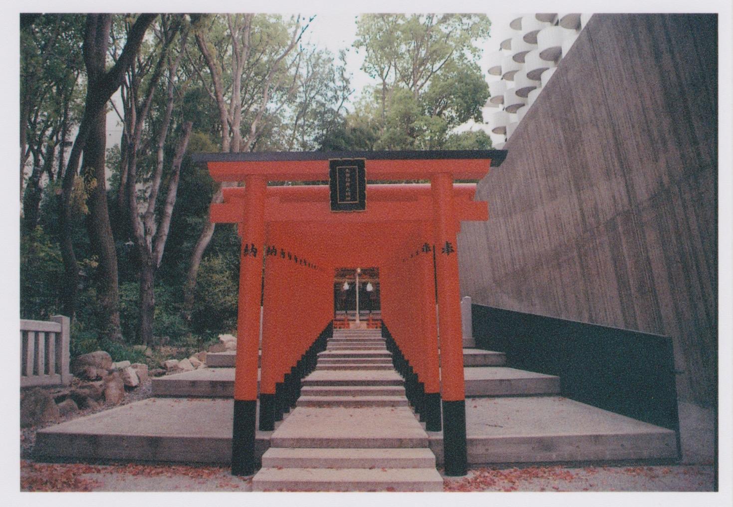 Kobe_Film_9.jpeg