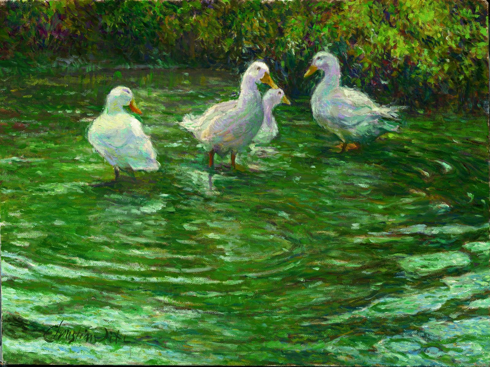 ducklings-swop.jpg