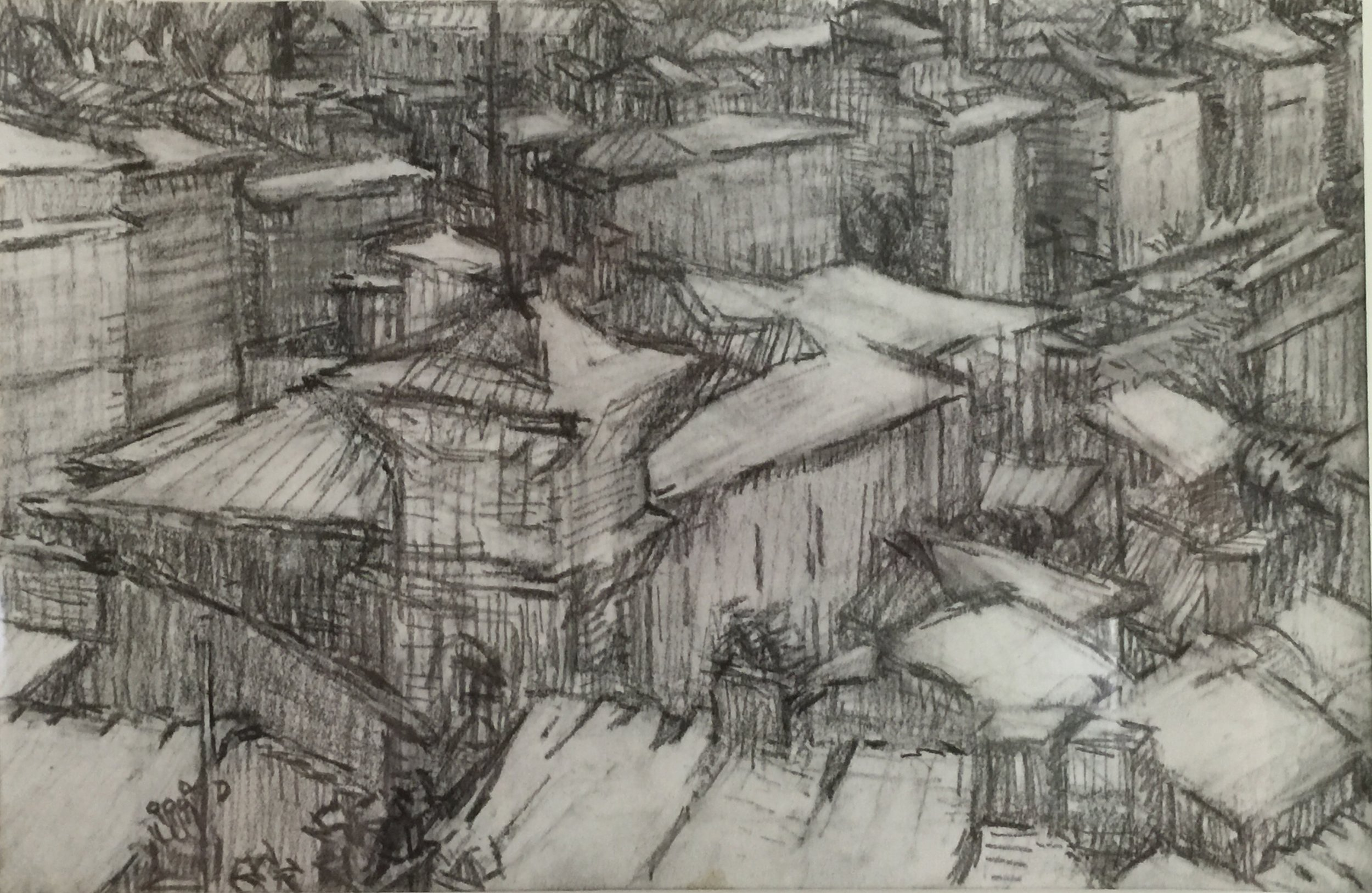 Florence Rooftops