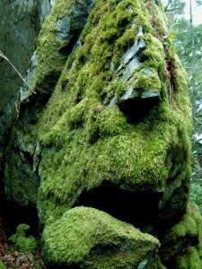 green_man1006