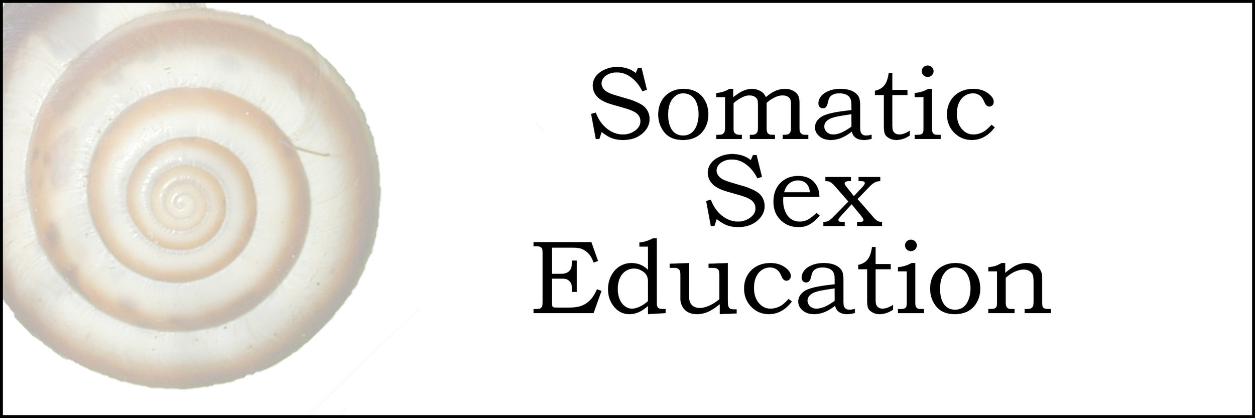 SSE-Banner.jpg