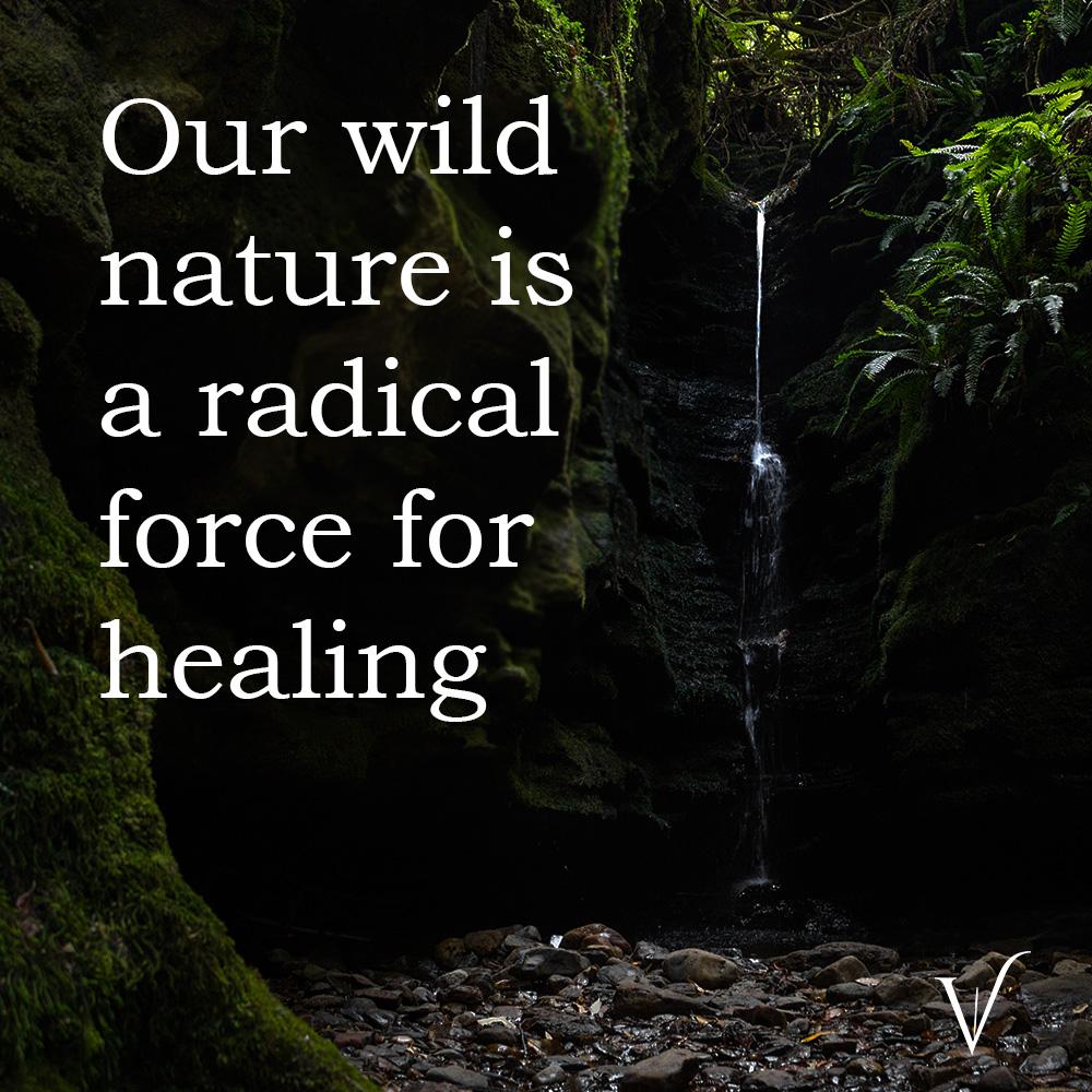 wild-nature-new-font.jpg