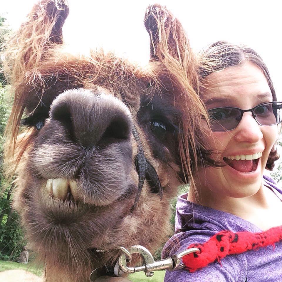 Lark the llama selfie (1).jpg