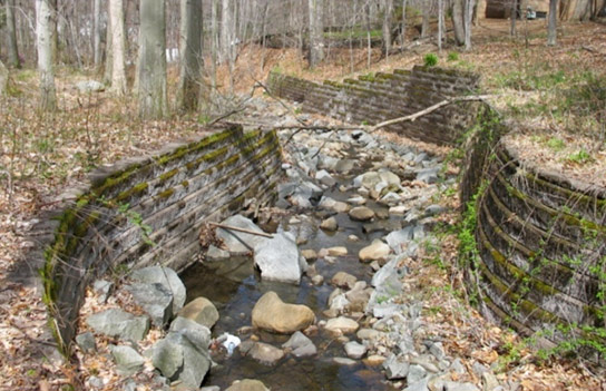 2 Years After Erosion Control