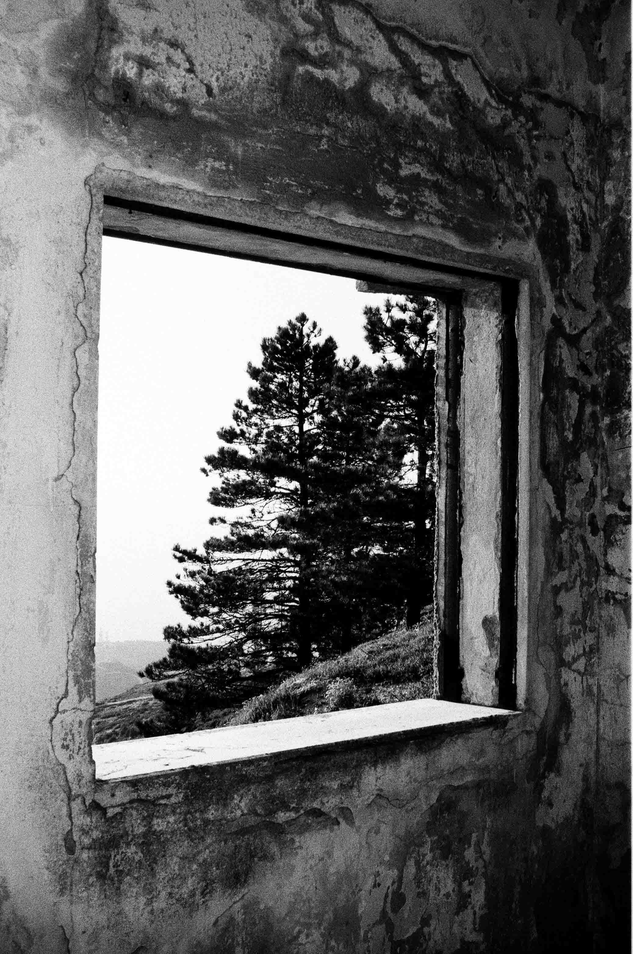 ChristosVourlis_photography_CVHAIR_CVDIARY_personal diary__film_35mm_0027_27A.jpg