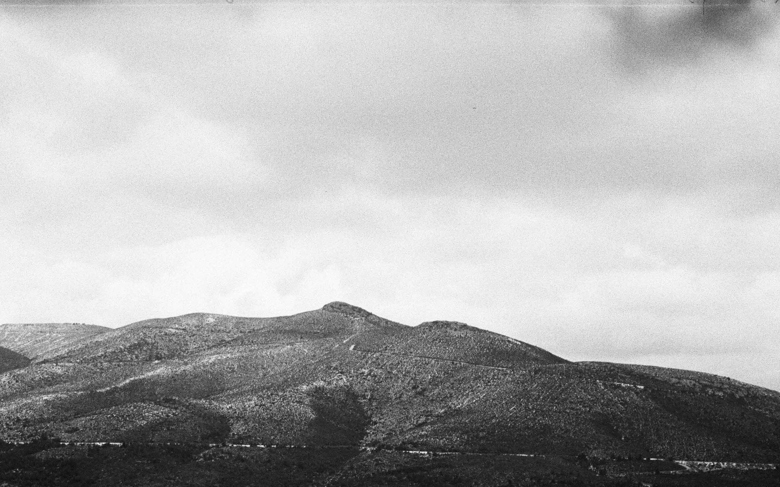 ChristosVourlis_photography_CVHAIR_CVDIARY_personal diary__film_35mm_57250003.JPG