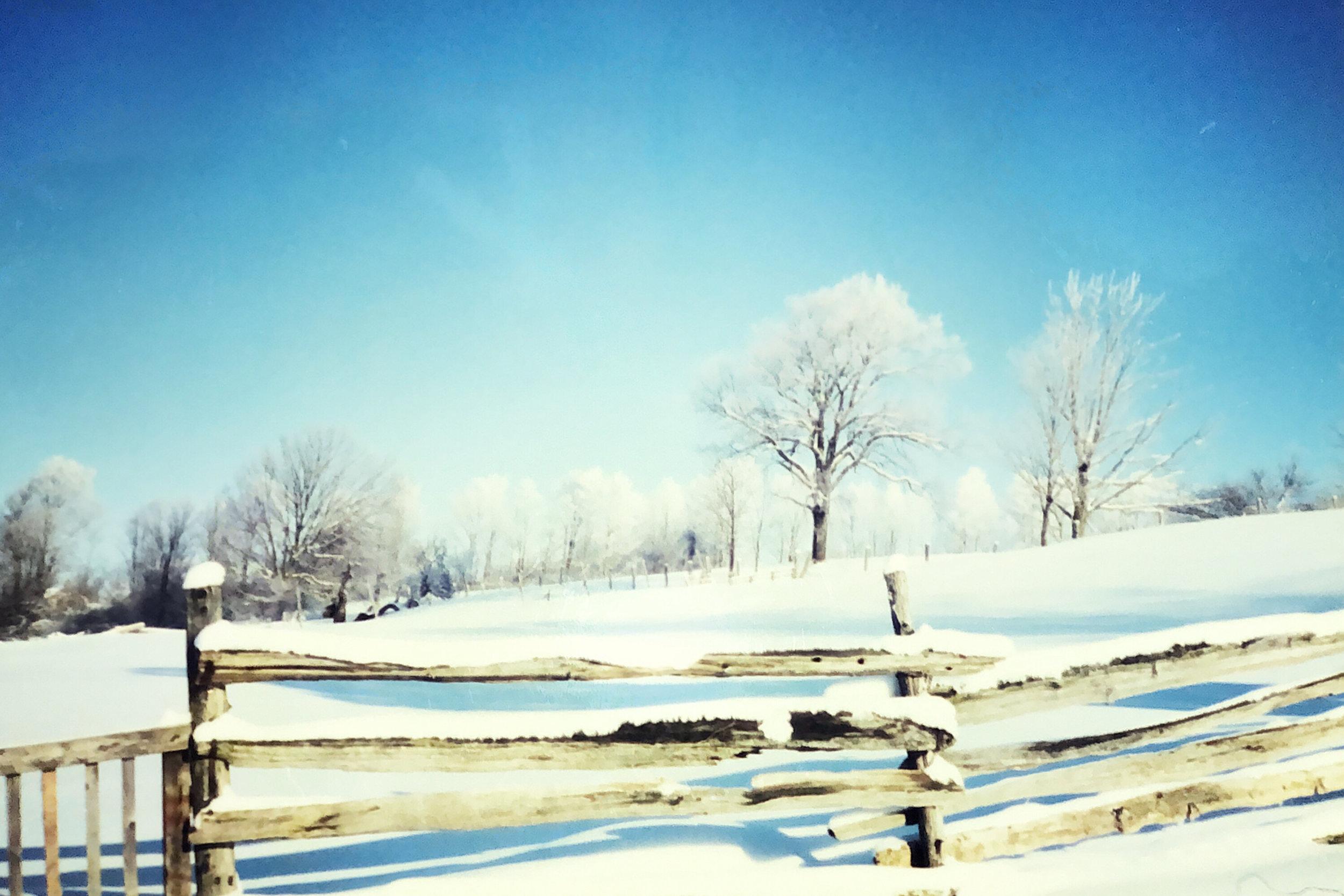 Landscape - IMG_4C15B19EFA0B-1.jpeg
