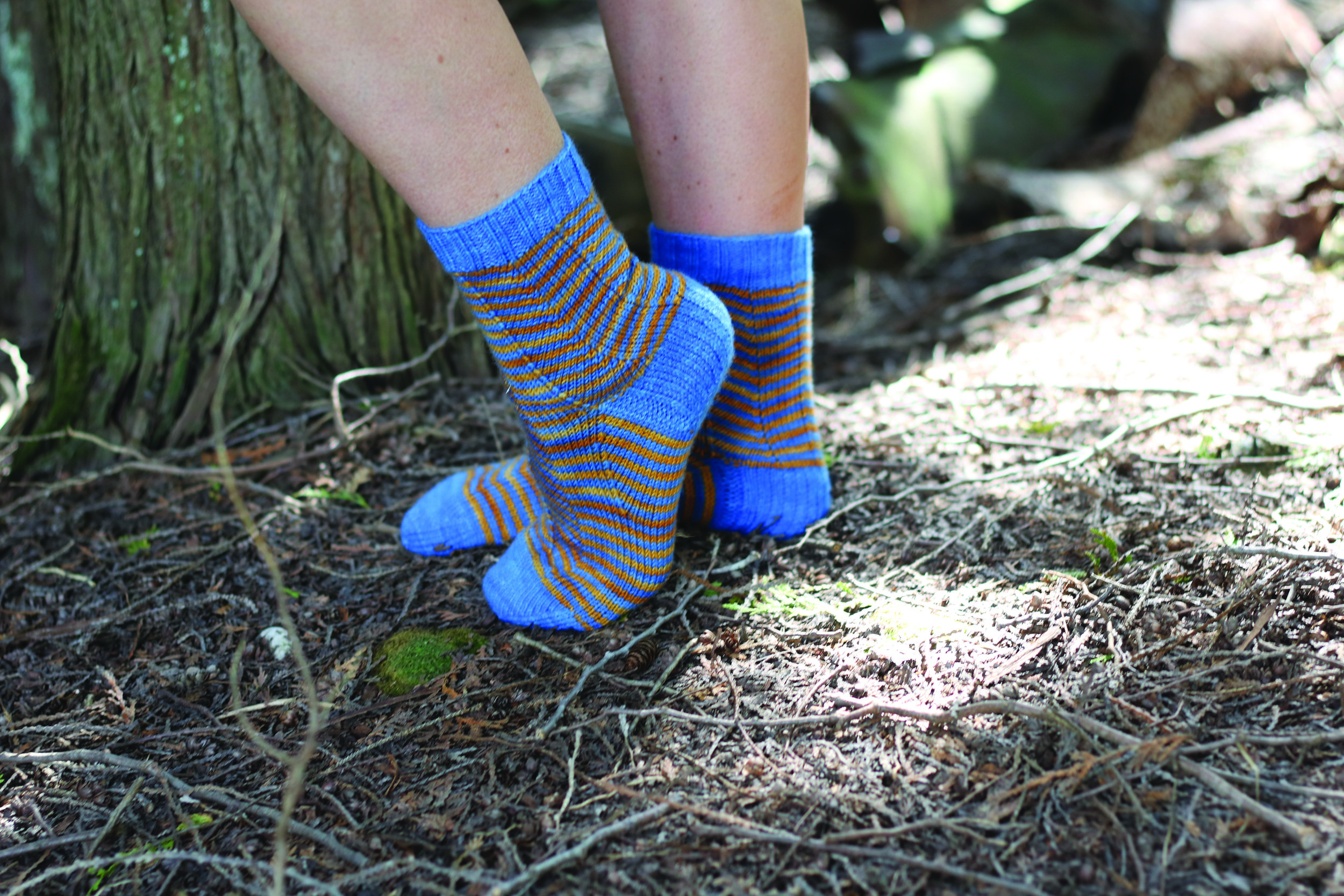 Zigazaya Socks  By Caroline Dick