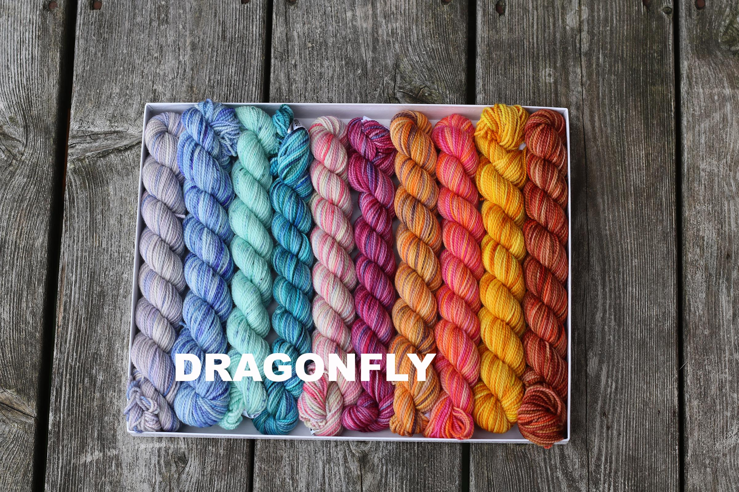 DRAGONFLYIMG_0920.jpg