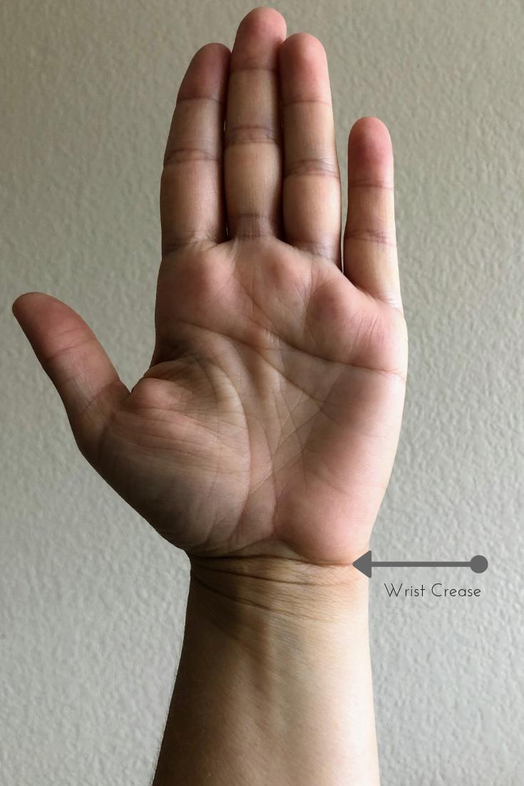 Wrist Crease.png