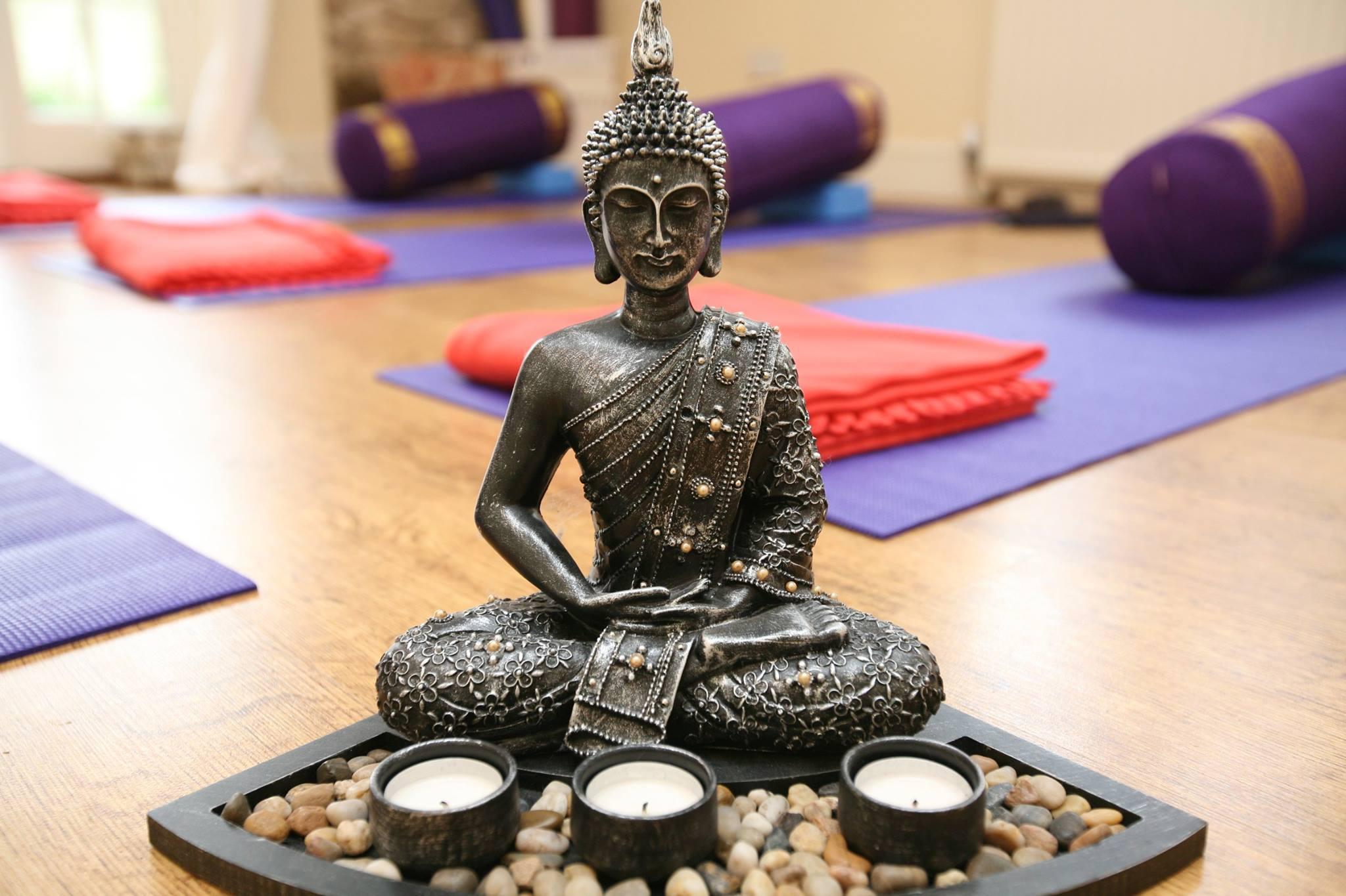 1-2-1 Yoga Therapy or Pregnancy yoga -