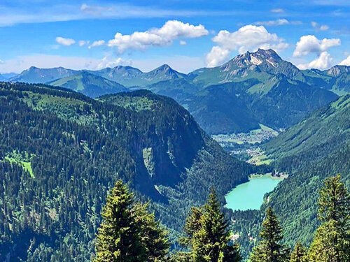 LV-Alp2.jpg