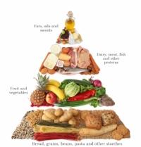 food-pyramid-picture-id147033440.jpg