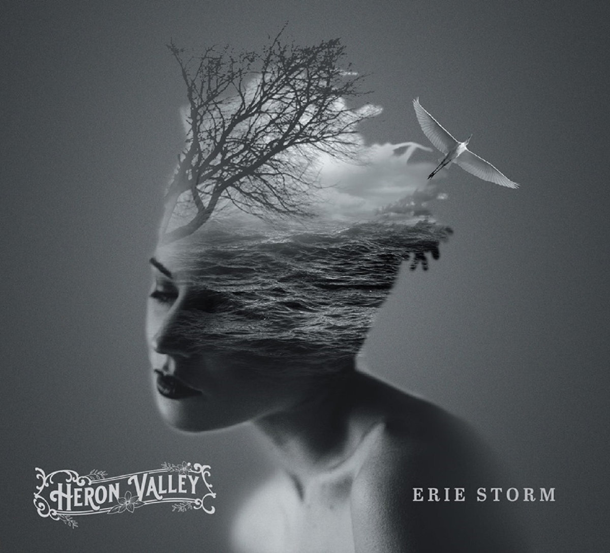 erie storm artwork.jpg